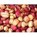 African fresh kolanuts