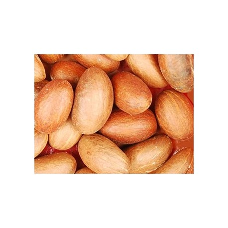 African bitter  kolanuts